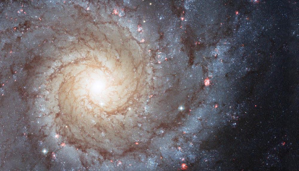 unleashing-joy-nebula-1